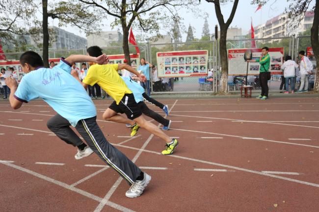 湖北省襄阳市第四科学abcdef中学初中均是图片